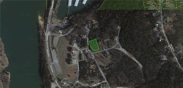 Lot 17 Block 16 Larkspur Lane, Holiday Island, AR 72631 (MLS #1201894) :: McNaughton Real Estate