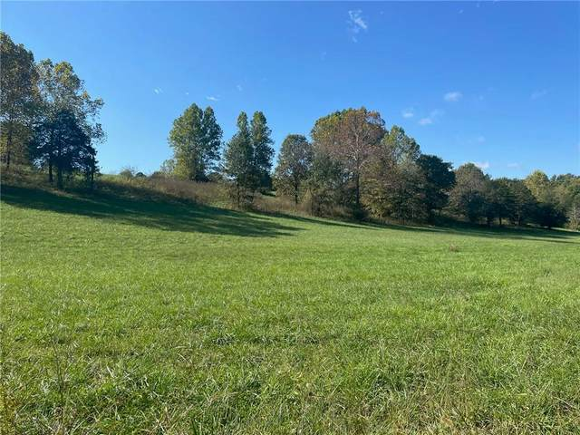 County Road 4171, Berryville, AR 72616 (MLS #1201941) :: McNaughton Real Estate