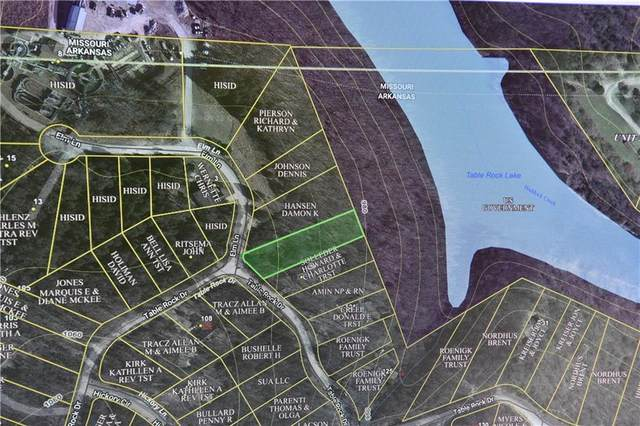 115 Table Rock Lane, Holiday Island, AR 72631 (MLS #1201973) :: McNaughton Real Estate