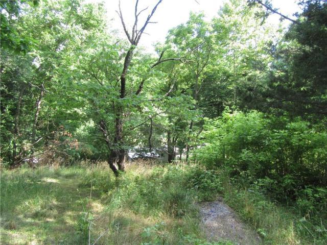 Washington, Eureka Springs, AR 72632 (MLS #1018840) :: McNaughton Real Estate