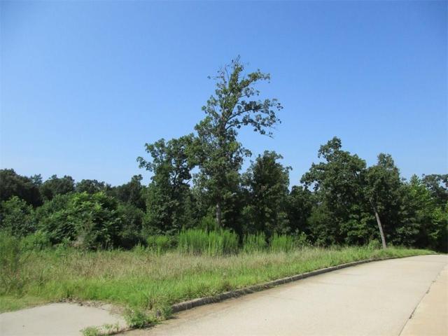 Edith, Huntsville, AR 72740 (MLS #1024493) :: McNaughton Real Estate