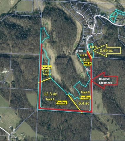 0 Peck Rd. Lot A, Pea Ridge, AR 72751 (MLS #1037235) :: McNaughton Real Estate