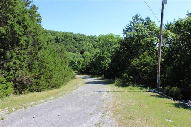 4 Beaver Circle, Holiday Island, AR 72631 (MLS #1050283) :: McNaughton Real Estate