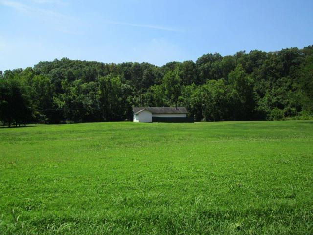 1004 Blue Heron Road, Little Flock, AR 72756 (MLS #1052770) :: McNaughton Real Estate