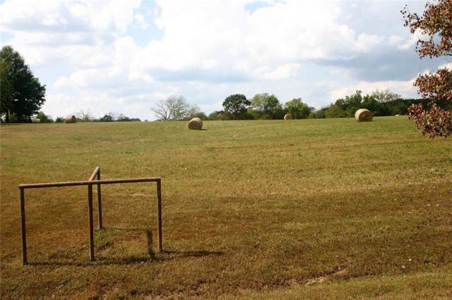 204 Northfork, Berryville, AR 72616 (MLS #1060092) :: McNaughton Real Estate