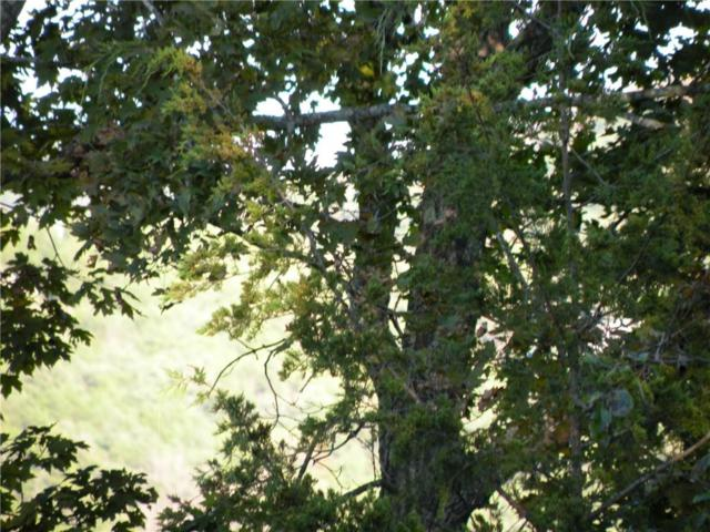 64 Beaver Drive, Holiday Island, AR 72631 (MLS #1062285) :: McNaughton Real Estate