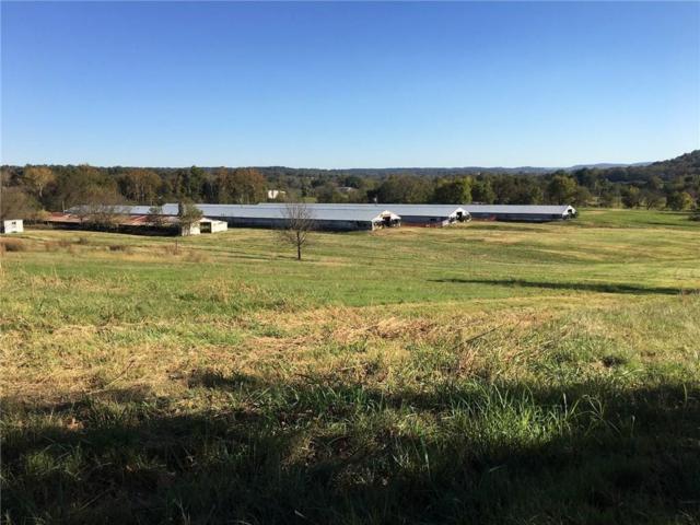15156 Old Highway 68, Siloam Springs, AR 72761 (MLS #1062527) :: McNaughton Real Estate