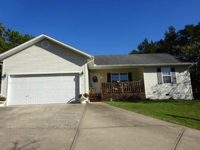 95 Blackfoot Drive, Holiday Island, AR 72631 (MLS #1062590) :: McNaughton Real Estate