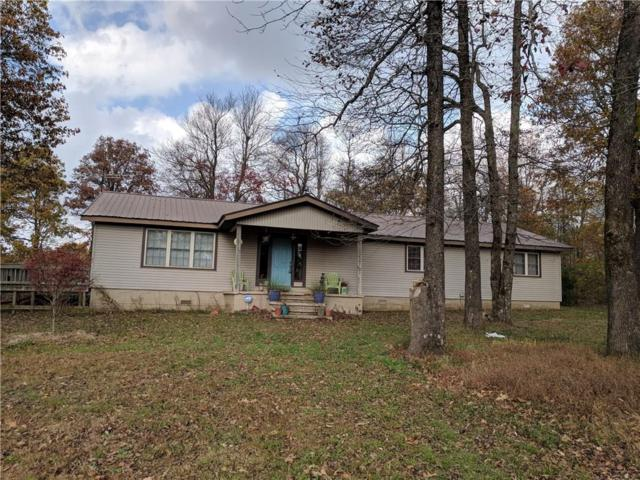 1995 Madison 4805, Pettigrew, AR 72752 (MLS #1064607) :: McNaughton Real Estate