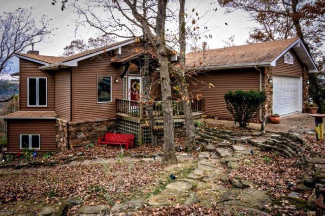 75 Beaver Drive, Holiday Island, AR 72631 (MLS #1065211) :: McNaughton Real Estate