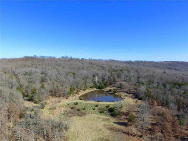 Hale Rd, Goshen, AR 72727 (MLS #1065989) :: McNaughton Real Estate