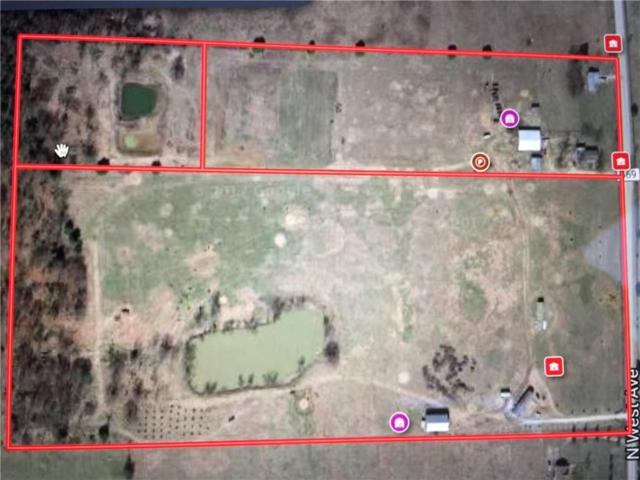 10533 Jackson Highway, Lincoln, AR 72744 (MLS #1068025) :: McNaughton Real Estate