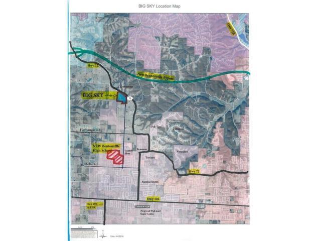 3790 Bitterroot Street, Centerton, AR 72719 (MLS #1070926) :: McNaughton Real Estate