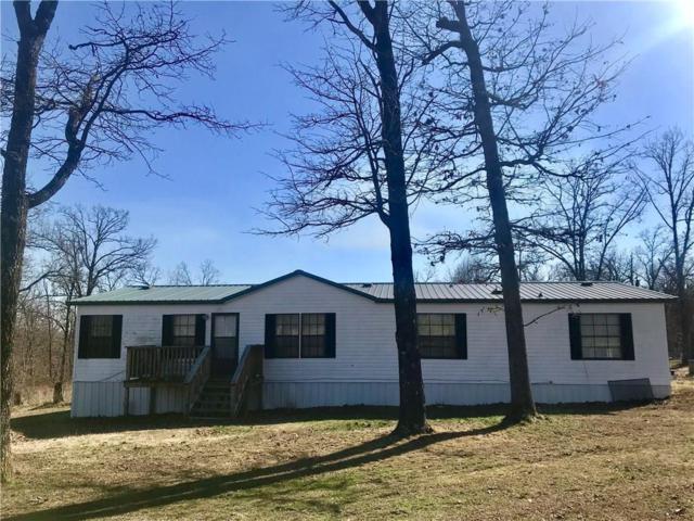 11009 Georgia Flat Road, Gravette, AR 72736 (MLS #1075151) :: McNaughton Real Estate