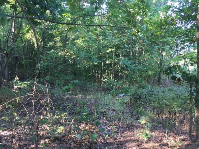 Tract B Silverwood, Prairie Grove, AR 72753 (MLS #1075644) :: McNaughton Real Estate