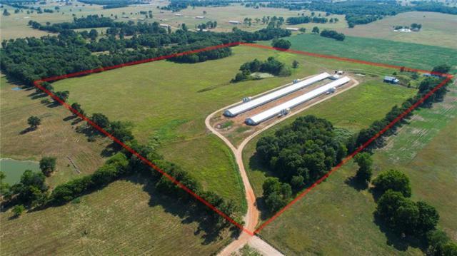 TBD E 0642  Rd, Westville, OK 74965 (MLS #1083306) :: McNaughton Real Estate