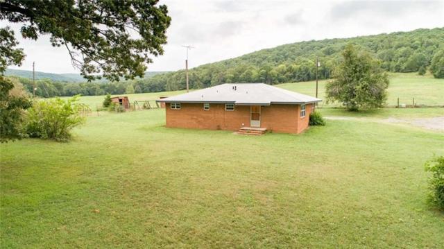 12048 White Water  Rd, Rudy, AR 72952 (MLS #1087357) :: McNaughton Real Estate