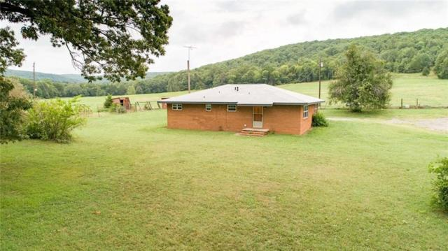 12048 White Water  Rd, Rudy, AR 72952 (MLS #1087366) :: McNaughton Real Estate