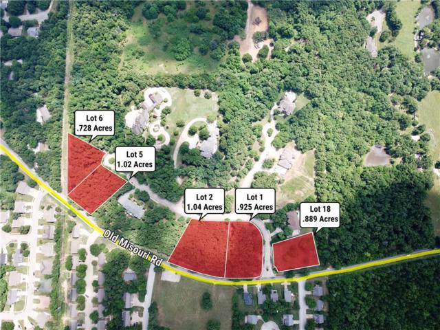 4165 N Bentwood Lane, Fayetteville, AR 72703 (MLS #1096743) :: McNaughton Real Estate
