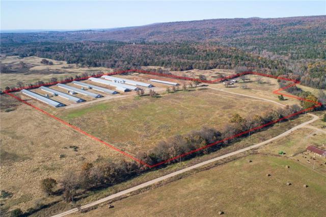 11338 Doe Run  Tr, Ozark, AR 72949 (MLS #1096936) :: Five Doors Real Estate - Northwest Arkansas