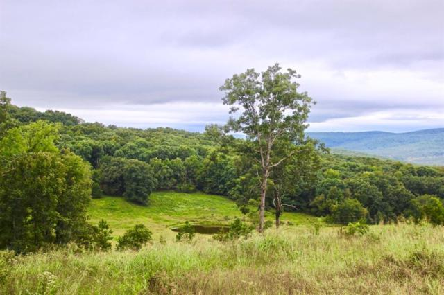 22161 Bugscuffle  Rd, West Fork, AR 72774 (MLS #1097945) :: McNaughton Real Estate