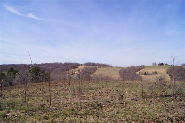 0 Low Gap  Rd, Noel, MO 64854 (MLS #1108572) :: HergGroup Arkansas