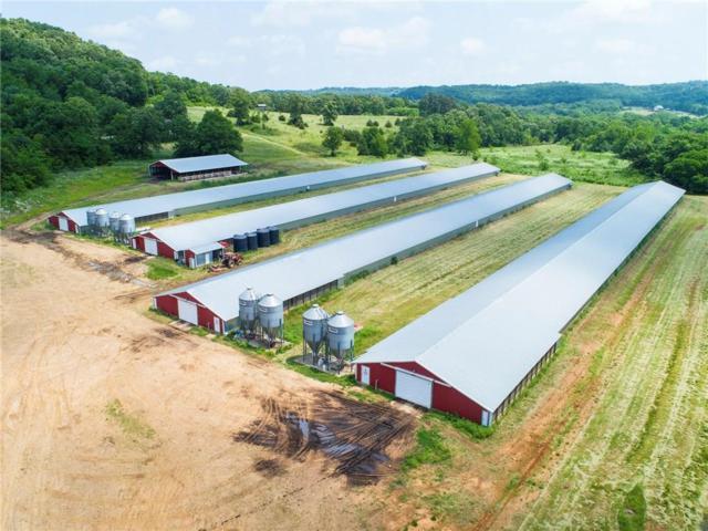 11702 Brubaker  Rd, West Fork, AR 72774 (MLS #1112419) :: HergGroup Arkansas