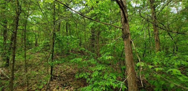 Spider Creek  Rd, Garfield, AR 72732 (MLS #1114086) :: Five Doors Network Northwest Arkansas