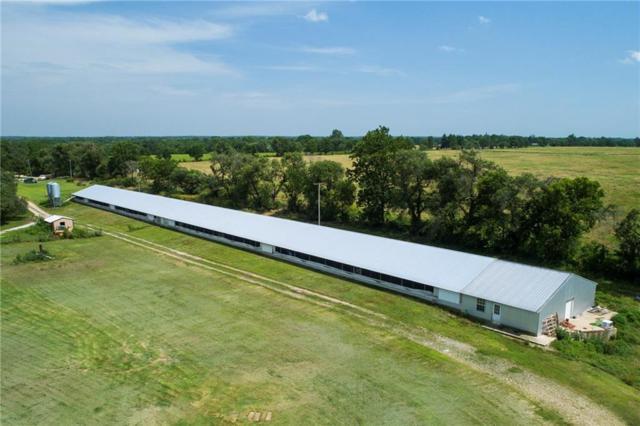 41991 710  RD, Jay, OK 74346 (MLS #1116021) :: McNaughton Real Estate