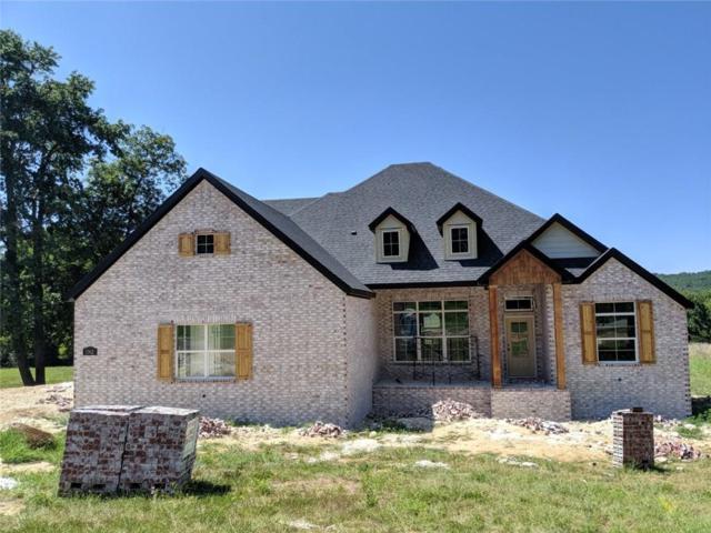 1362 S Spring  Loop, Goshen, AR 72735 (MLS #1121775) :: McNaughton Real Estate