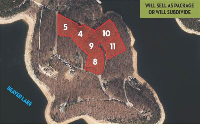 2.94 Acres (Lot 10 & Highland Way, Garfield, AR 72732 (MLS #1130590) :: Jessica Yankey | RE/MAX Real Estate Results