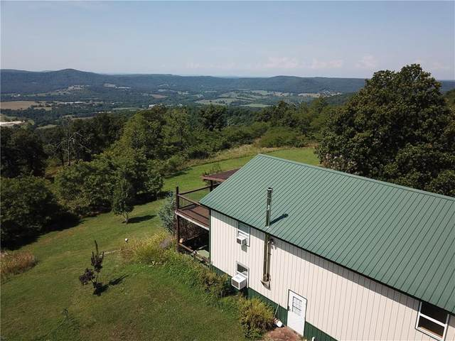 957 County Road 905, Green Forest, AR 72638 (MLS #1136818) :: Jessica Yankey | RE/MAX Real Estate Results