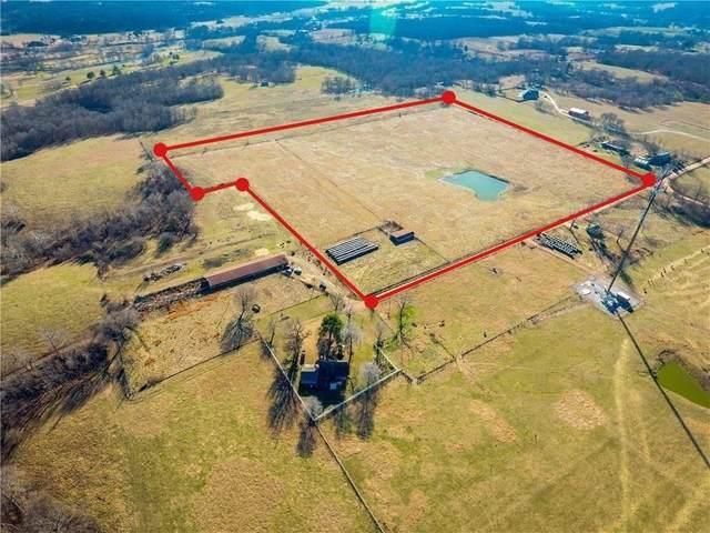 36.93 Acres Howard Lane, Cave Springs, AR 72718 (MLS #1156849) :: McNaughton Real Estate