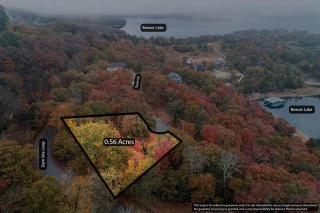 Lot 5 Ozark Drive, Garfield, AR 72732 (MLS #1163847) :: McNaughton Real Estate