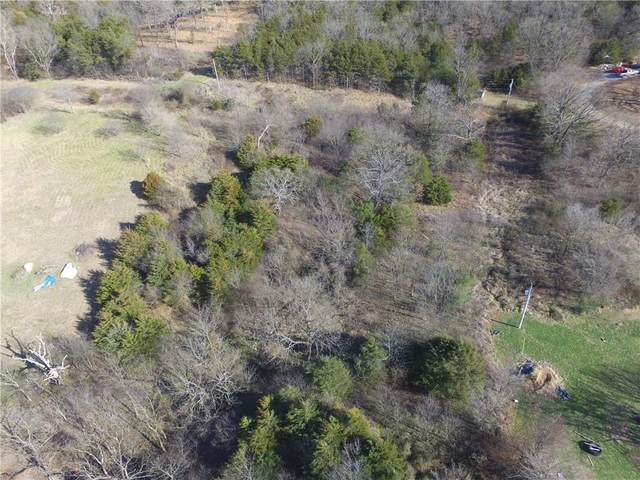 Cr 425, Berryville, AR 72616 (MLS #1169851) :: McMullen Realty Group