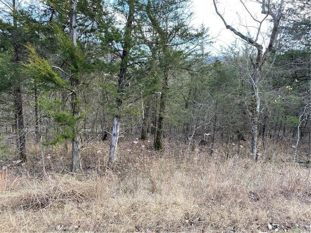 3 Cottonwood Lane, Holiday Island, AR 72631 (MLS #1170512) :: NWA House Hunters | RE/MAX Real Estate Results