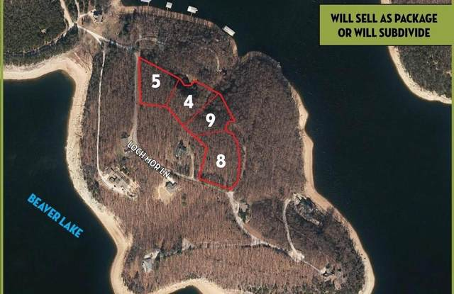 2.78 Acres (Lots 4 & Loch Mor Lane, Garfield, AR 72732 (MLS #1172236) :: McMullen Realty Group