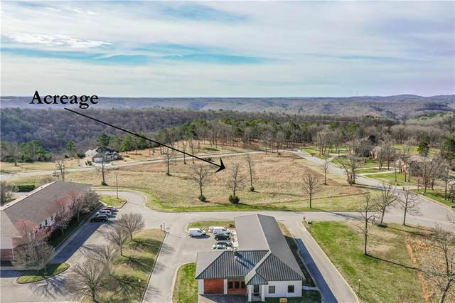 Park And Bluff Lane, Holiday Island, AR 72631 (MLS #1177071) :: NWA House Hunters | RE/MAX Real Estate Results