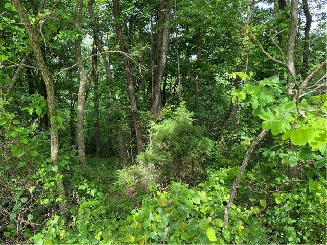 TBD Summit Drive, Holiday Island, AR 72631 (MLS #1184803) :: NWA House Hunters | RE/MAX Real Estate Results