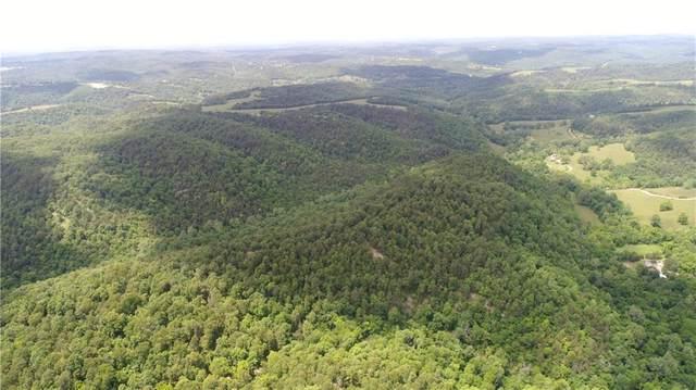 Cr 323 Tract B, Eureka Springs, AR 72632 (MLS #1187451) :: Five Doors Network Northwest Arkansas