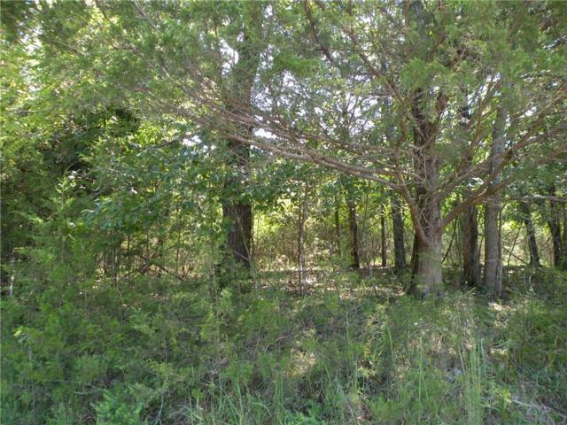 20 White River  Ln, Holiday Island, AR 72631 (MLS #1056326) :: McNaughton Real Estate