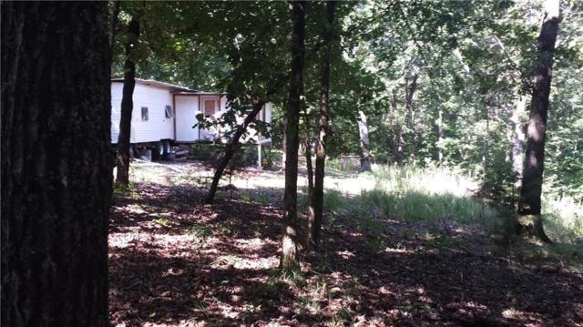 none Low Gap, Winslow, AR 72959 (MLS #1058061) :: McNaughton Real Estate