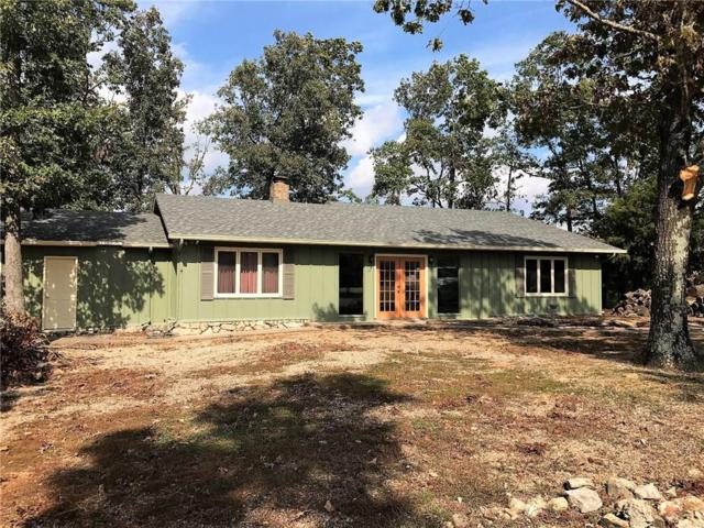 24 La Costa Drive, Holiday Island, AR 72631 (MLS #1062568) :: McNaughton Real Estate