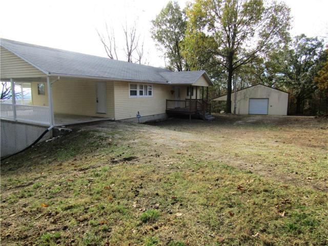 243 County Road 224, Berryville, AR 72616 (MLS #1063348) :: McNaughton Real Estate