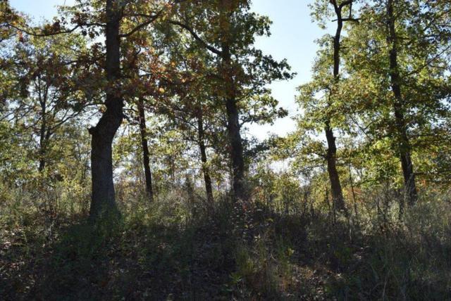 47.76AC N N Ferguson & Oakridge  Ln, Pineville, MO 64856 (MLS #1064602) :: Five Doors Real Estate - Northwest Arkansas