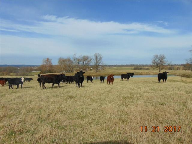 546 County Road 502, Berryville, AR 72616 (MLS #1065748) :: McNaughton Real Estate