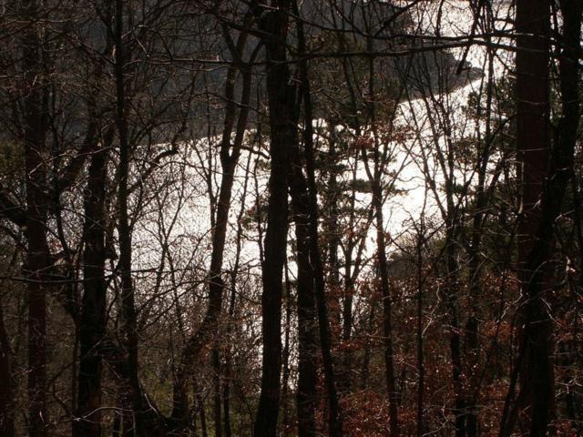 Bayshore Estates, Eureka Springs, AR 72631 (MLS #1068853) :: McMullen Realty Group