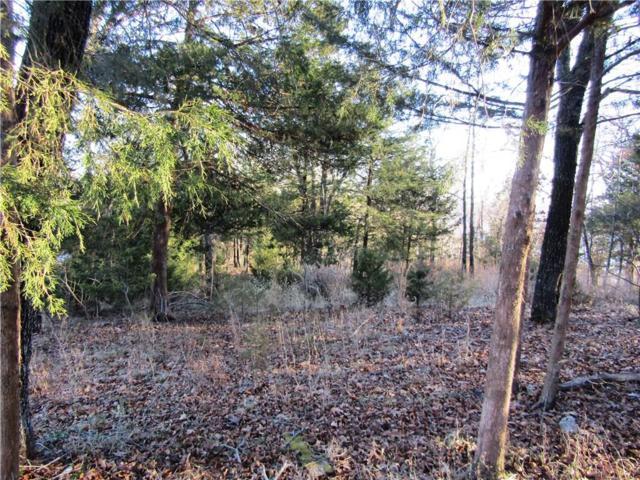 Country Club  Cir, Garfield, AR 72732 (MLS #1070275) :: HergGroup Arkansas