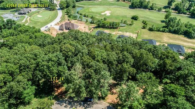 Lot 14 Captain Good Street, Pea Ridge, AR 72751 (MLS #1139629) :: Annette Gore Team | RE/MAX Real Estate Results