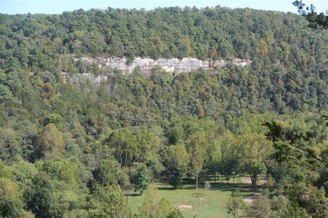Cr 1200, Huntsville, AR 72740 (MLS #1185916) :: Five Doors Network Northwest Arkansas
